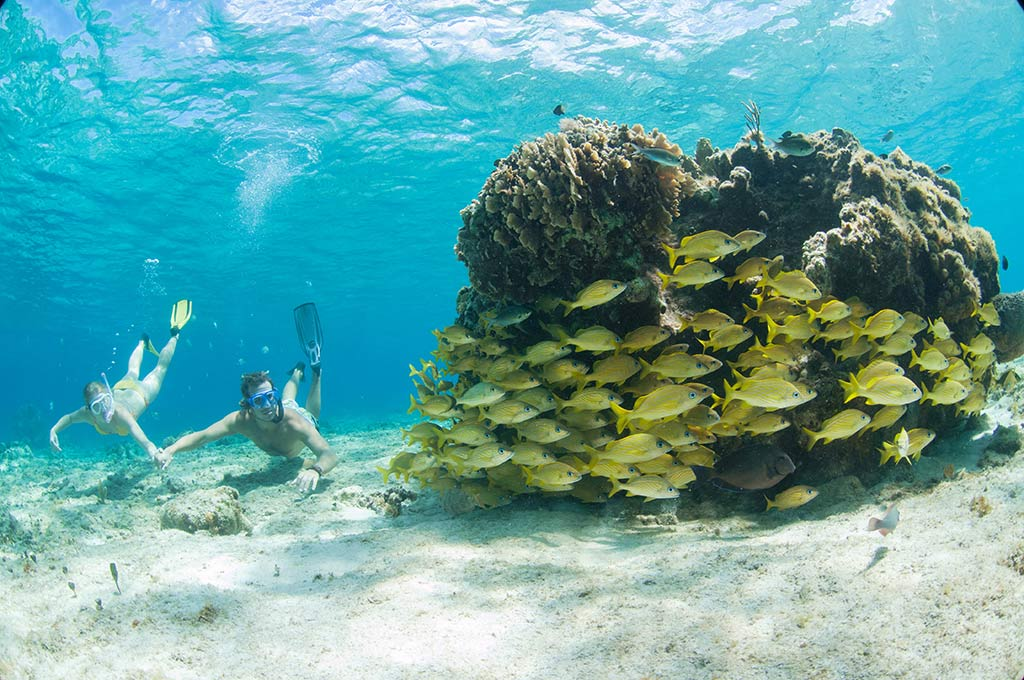 cancun_banner-viajes-andale_2