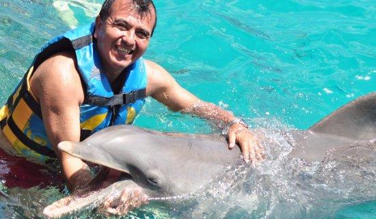 Nado-con-delfines_2